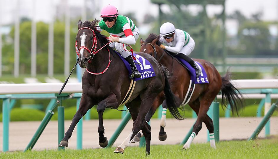 宝塚記念馬