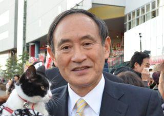 菅義偉と猫